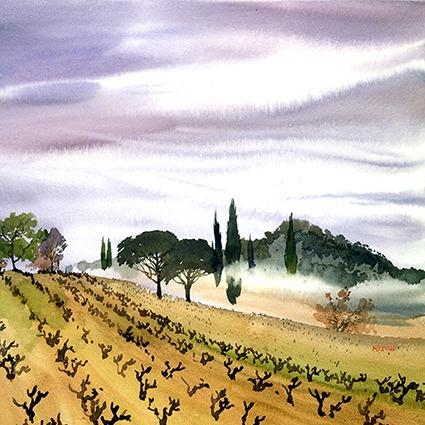 Mini Provence - Vignes
